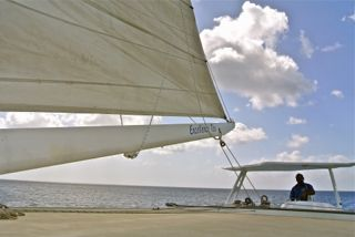 sails hoisted on the party catamaran -Photo (C) 2012